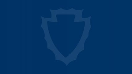 Blue Arrowhead Placeholder